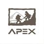 Apex頂點創思