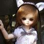 cat2ichigo