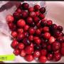 新鮮蔓越莓