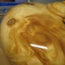 安安台灣檜木 圖像
