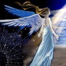 藍天使 圖像