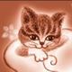 創作者 愛堇喵 的頭像
