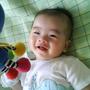 Chia hsing