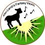 紐西蘭小綿羊代購