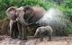 創作者 郵政預借現金 的頭像