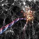 信用卡首刷禮 圖像