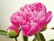 創作者 推薦信用卡銀行 的頭像