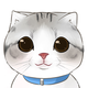 創作者 雞蛋貓異想世界 的頭像