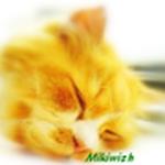 Mikiwish