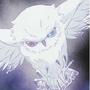 ╭☆夜鴞♥