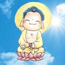 澳洲香光大佛寺 圖像