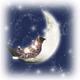 創作者 星月遊蹤 的頭像