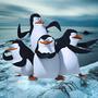 Penguin桑