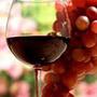 單寧葡萄酒