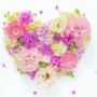 1314幸福小蘇子